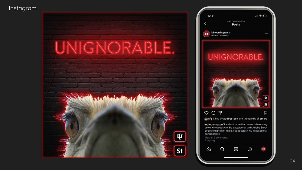 """A mockup of an Instagram ad. An ostrich head appears under the word """"unignorable"""" written in neon on a brick wall. It's posted to the @iubloomington account with the caption: Stand out more than an ostrich running down Kirkwood Ave. Be exceptional with Adobe Stock by clicking the link in bio. #adobestock #iu #exceptional #unignorable"""